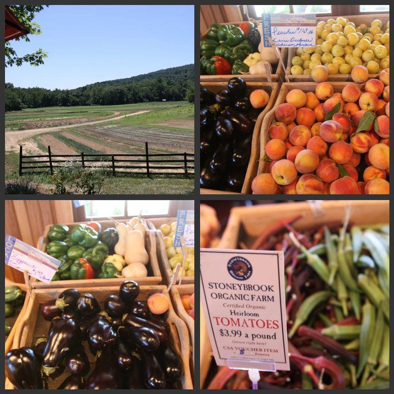 Picnik collage- stoneybrookfarm